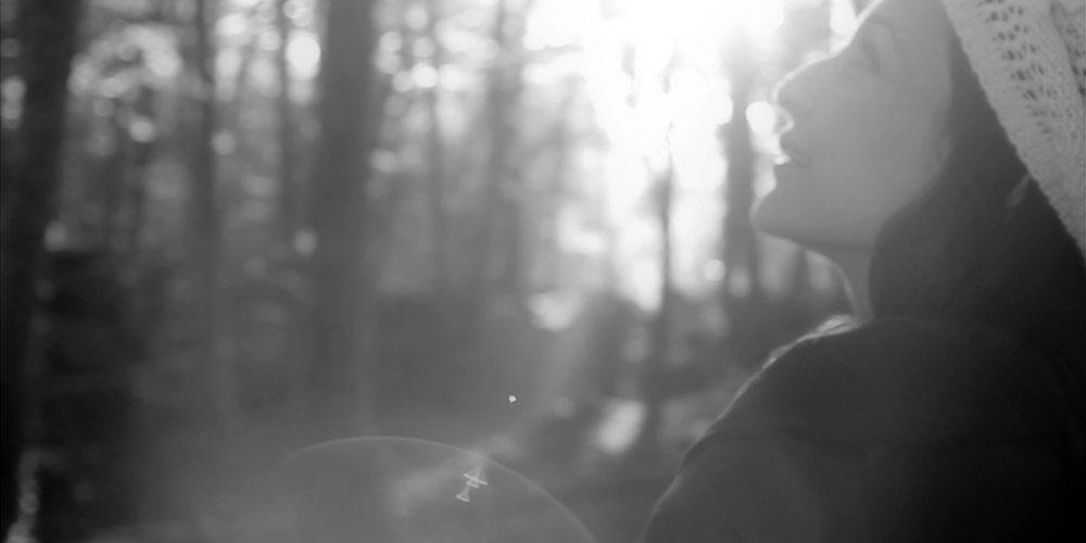Blackbird Daisy. Videoclip